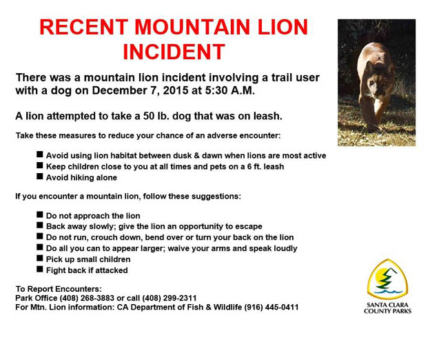Mountain lion notice from 12/7/15