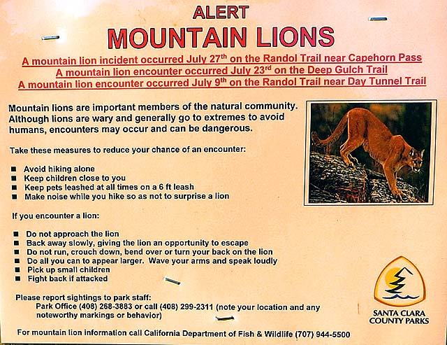 Mountain lion warning sign